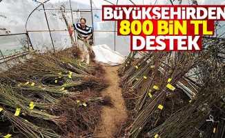 Samsun'da tarıma 800 bin TL destek