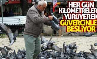 Güvercinler için kilometrelerce yürüyor