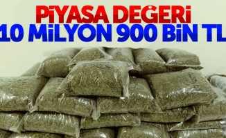 Karadeniz'de 10 milyon değerinde uyuşturucu ele geçirildi