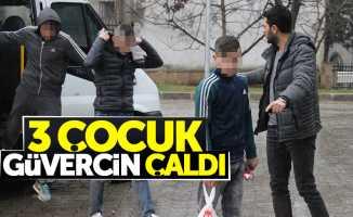 Samsun'da 3 çocuk güvercin çaldı