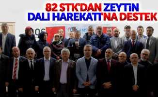 Samsun'da STK'lardan Zeytin Dalı Harekatı'na destek