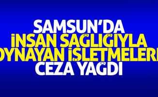 Samsun'da insan sağlığı ile oynayan işletmelere ceza yağdı