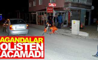 Samsun'da magandalar polisten kaçamadı