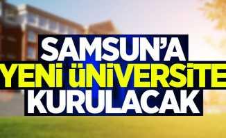 Samsun'a yeni üniversite kuruluyor