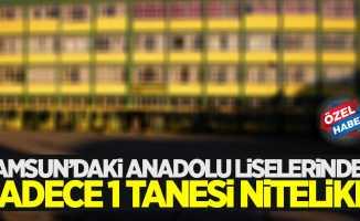 Samsun'daki Anadolu Liselerinden sadece 1 tanesi nitelikli!