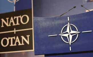 Suriye operasyonuna NATO'dan destek