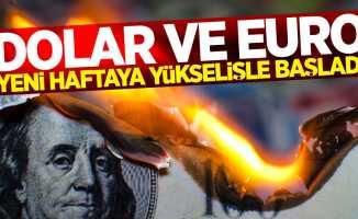 Dolar ve Euro ne kadar? (2 Temmuz pazartesi)