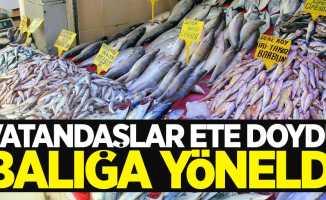 Samsun'da vatandaşlar balığa yönelmeye başladı