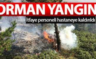 Gümüşhane'de ormanlık alanda yangın