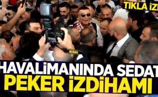 Havalimanında Sedat Peker izdihamı