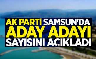 AK Parti Samsun'da aday adayı sayısını açıkladı