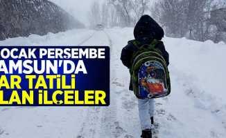 17 Ocak Perşembe Samsun'da kar tatili olan ilçeler