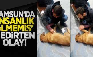 Samsun'da 'insalık ölmemiş' dedirten olay
