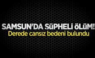 Samsun'da şüpheli ölüm! Derede cansız bedeni bulundu
