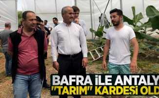 """Bafra ile Antalya """"tarım"""" kardeşi oldu"""
