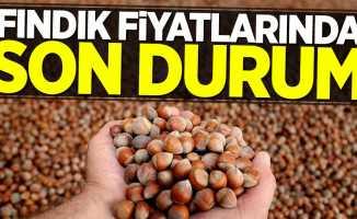 Fındık fiyatlarında flaş değişiklik 17 Mayıs Perşembe
