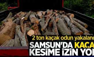 Samsun'da kaçak kesime izin yok! 2 ton kaçak odun yakalandı