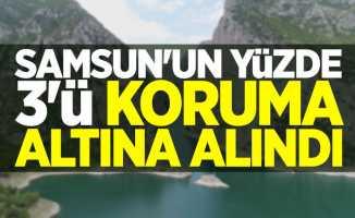 Samsun'un yüzde 3'ü koruma altına alındı