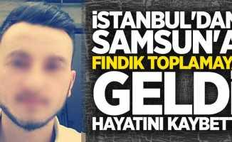 İstanbul'dan Samsun'a fındık toplamaya geldi hayatını kaybetti