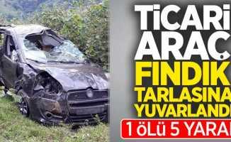 Ticari araç fındık tarlasına yuvarlandı 1 ölü 5 yaralı