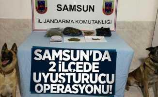 Samsun'da 2 ilçede uyuşturucu operasyonu! 1 gözaltı