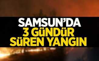 Samsun'da 3 gündür sönmeyen yangın