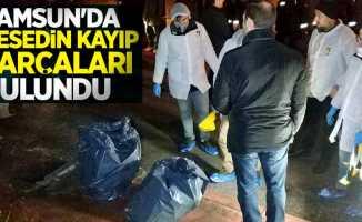 Samsun'da cesedin kayıp parçaları bulundu