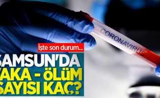 Samsun'da korona virüs vaka-ölüm son durum