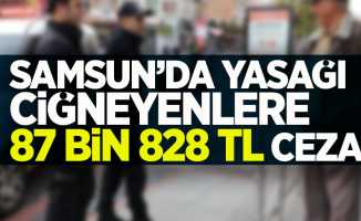 Samsun'da yasağı çiğneyenlere 87 bin 828 TL ceza !