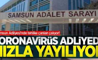 Samsun Adliyesi'nde tehlike çanları çalıyor! Koronavirüs adliyede hızla yayılıyor