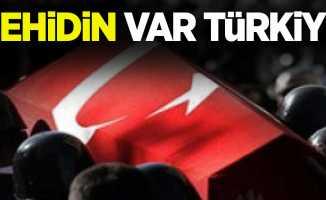 Şehidin var Türkiye