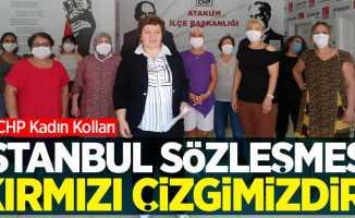 CHP Kadın Kolları'nda İstanbul Sözleşmesine dair açıklama