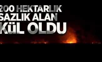 Samsun'da 200 hektarlık sazlık alan kül oldu!