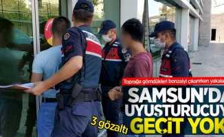 Samsun'da toprağa gömdükleri bonzaiyi çıkarırken yakalandılar