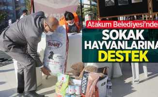 Atakum Belediyesi'nden sokak hayvanlarına destek