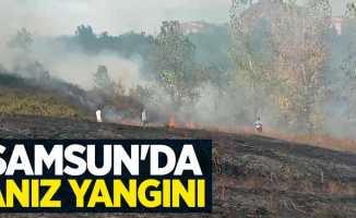 Samsun'da anız yangını