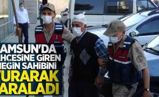Samsun'da bahçesine giren ineğin sahibi vurarak yaraladı