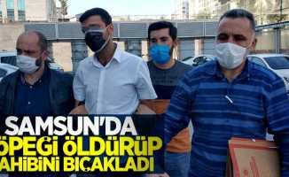 Samsun'da köpeği öldürüp sahibini bıçakladı