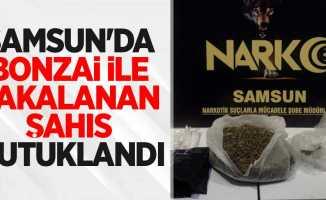 Samsun'da bonzai ile yakalanan şahıs tutuklandı