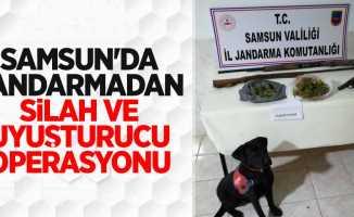 Samsun'da jandarmadan silah ve uyuşturucu operasyonu
