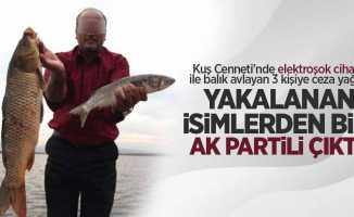 Kuş Cenneti'nde elektroşokla kaçak balık avlayan isim AK Partili çıktı