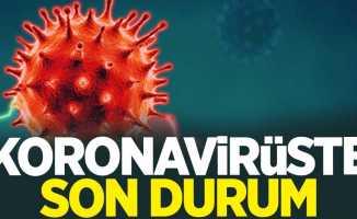 31 Ocak korona virüs tablosu açıklandı