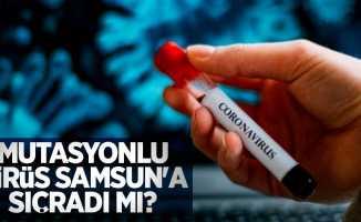 Mutasyonlu virüs Samsun'a sıçradı mı?