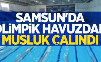 Samsun'da olimpik havuzdan musluk çalındı