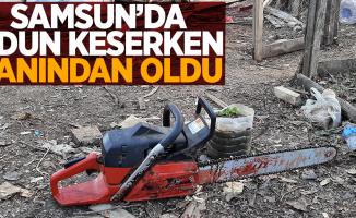 Samsun'da odun keserken canından oldu