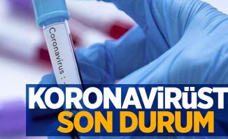 6 Mayıs koronavirüs tablosu açıklandı