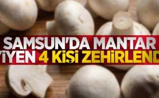 Samsun'da mantar yiyen 4 kişi zehirlendi