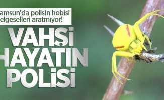 Samsun'da polisin hobisi belgeselleri aratmıyor! Vahşi hayatın polisi
