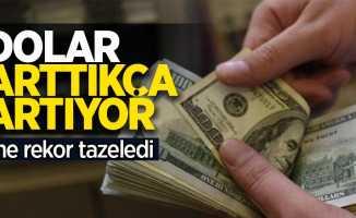 Dolar arttıkça artıyor!