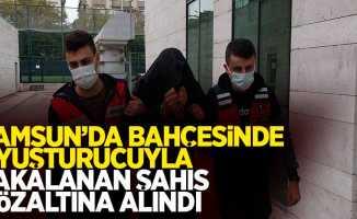 Samsun'da bahçesinde uyuşturucuyla yakalanan şahıs gözaltına alındı
